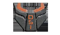 DSI Seguridad Logo